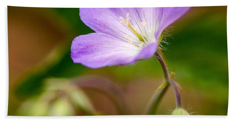 Flower Bath Sheet featuring the photograph Wild Geranium by Louise Heusinkveld