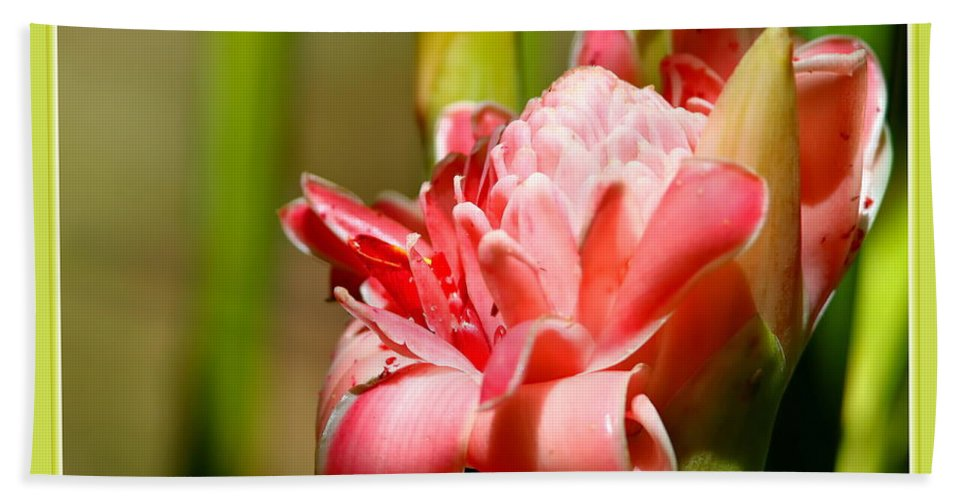 Ginger Hand Towel featuring the photograph Wild Ginger by BYETPhotography