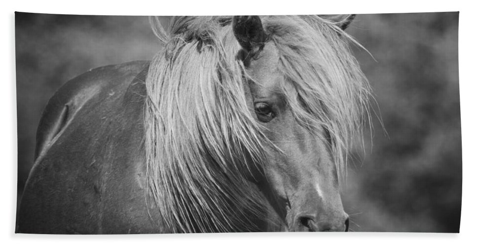 Wild Horse Hand Towel featuring the photograph Wild Horse Of Assateague by Stephanie McDowell