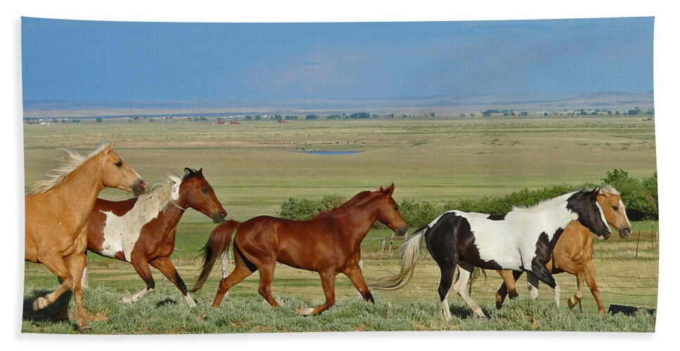 Herd Bath Towel featuring the photograph Wild Horses Wyoming by Heather Coen