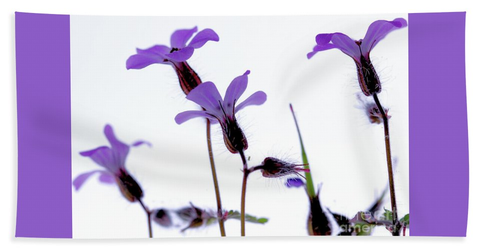 Macro Bath Sheet featuring the photograph Wild Knotted Cranesbill by Baggieoldboy