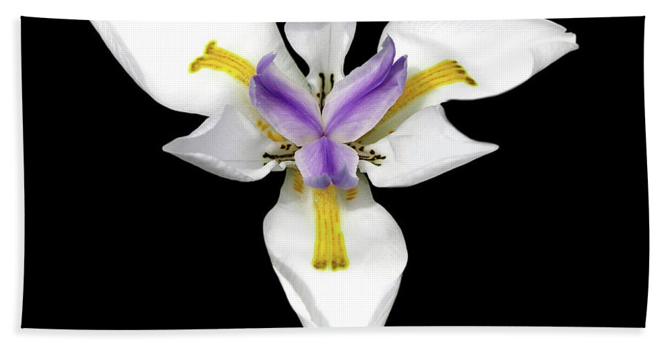 Flower Photos Hand Towel featuring the photograph Wild Lily by Maria Ollman