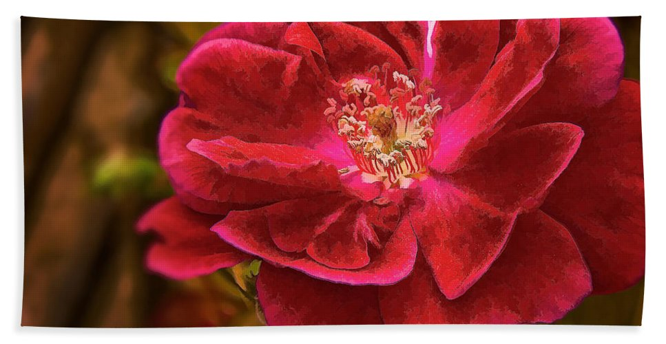 Rose Bath Sheet featuring the photograph Wild Rose As Oil by Charles Muhle