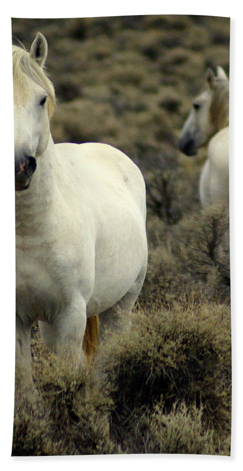 Wild Horses Bath Towel featuring the photograph Wild Stallion by Marty Koch