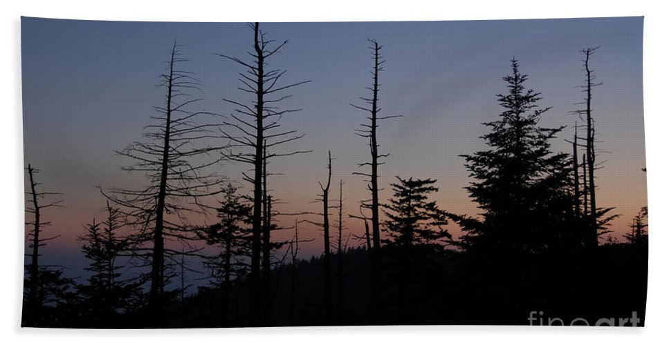 Wilderness Hand Towel featuring the photograph Wilderness by David Lee Thompson