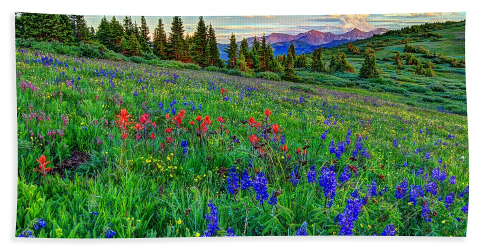 View Hand Towel featuring the photograph Wildflower Hill by Scott Mahon