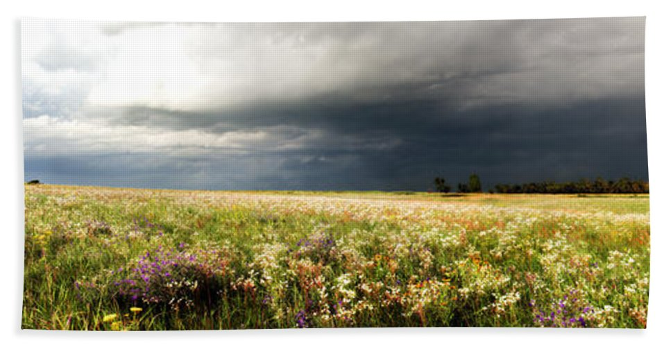 Wildflowers Hand Towel featuring the photograph Wildflower Panorama 2008 by Eric Benjamin