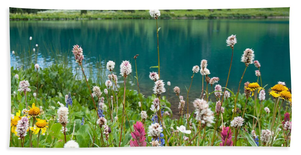 Blue Lake Hand Towel featuring the photograph Wildflowers Along The Lake by Cascade Colors