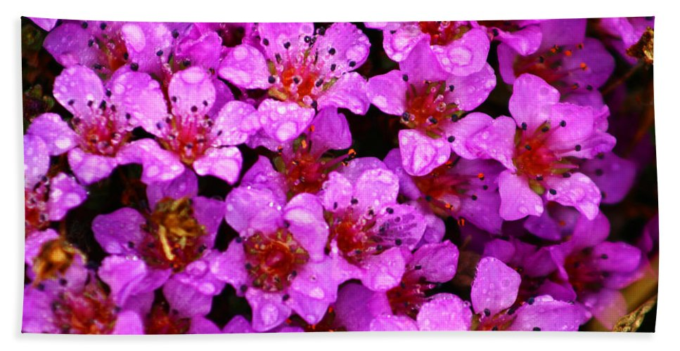 Wild Flowers Bath Sheet featuring the photograph Wildflowers by Anthony Jones