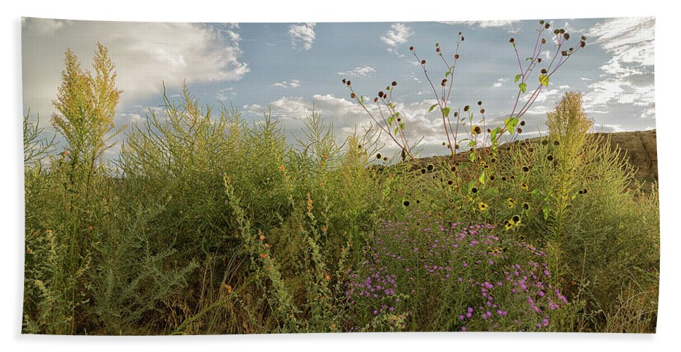 Wildflowers Hand Towel featuring the photograph Wildflowers Of Chaco by Nancy Gregory
