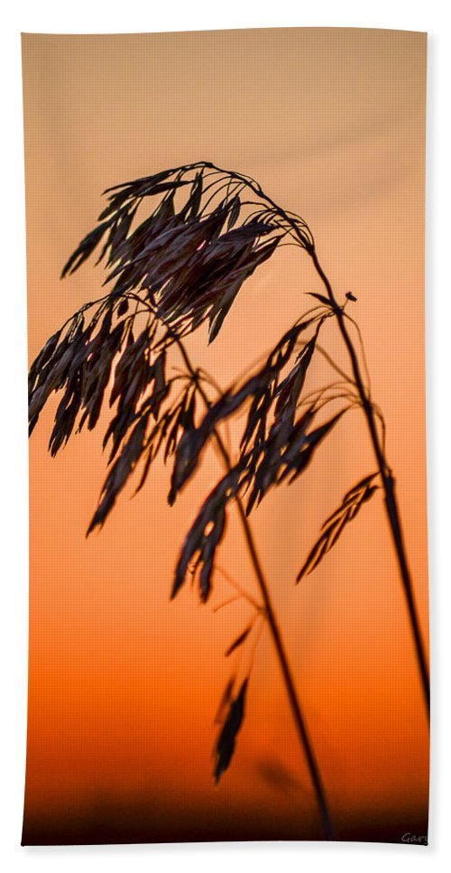 Wilting Hand Towel featuring the photograph Wilting Sunset by Gary Mosman
