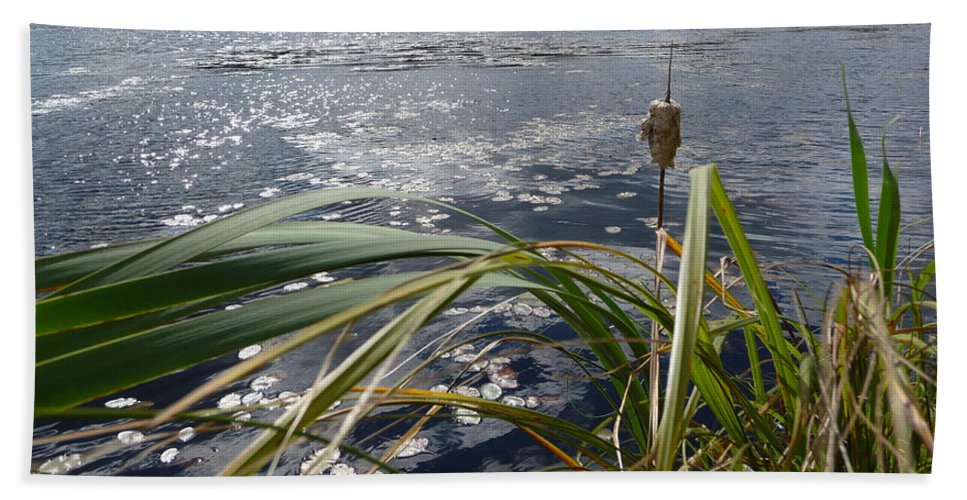 Nature Hand Towel featuring the photograph Wind And Water by Ruth Kamenev