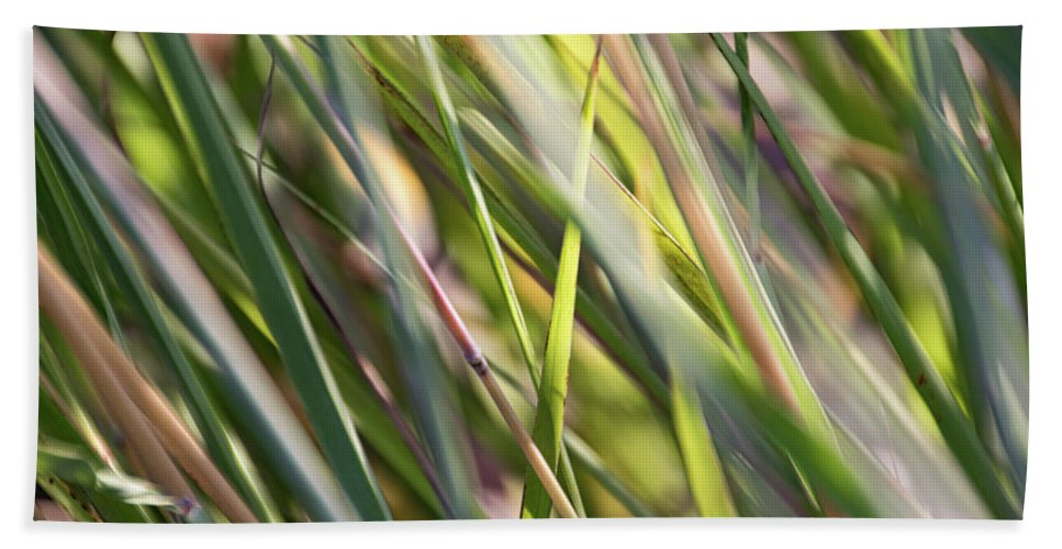 September Grasses Hand Towel featuring the photograph Wind Tossed - by Julie Weber