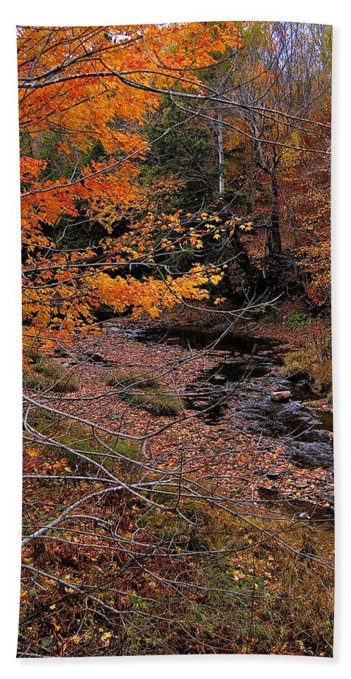 Autumn Photography Bath Sheet featuring the photograph Winding Brook by Kathleen Sartoris