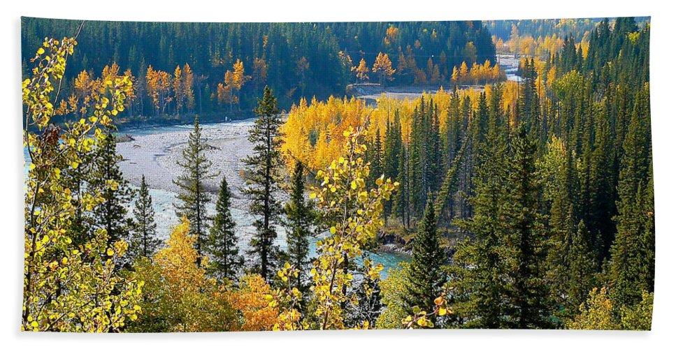 Landscape Bath Sheet featuring the photograph Winding Creek by Lisa Knechtel
