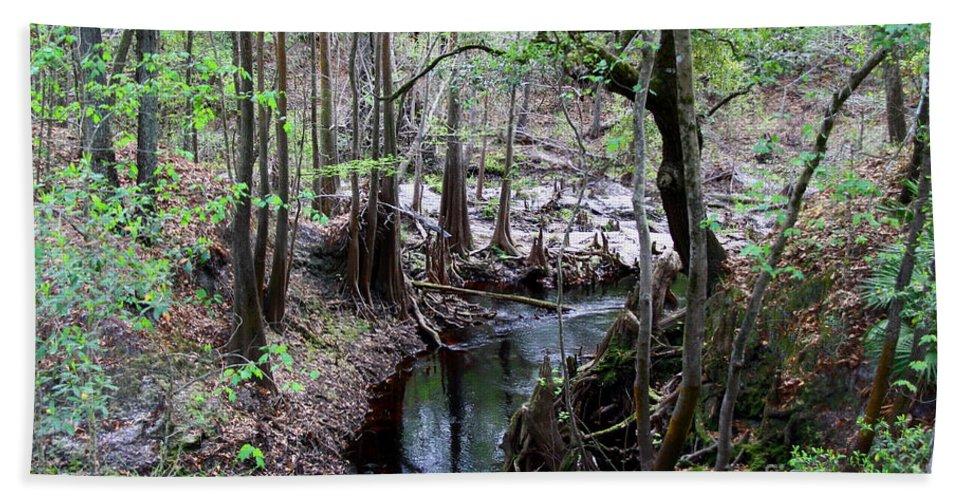 Sopchoppy River Bath Towel featuring the photograph Winding Sopchoppy River by Barbara Bowen