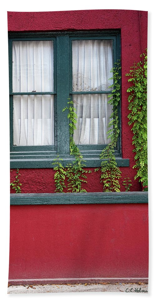 Window Bath Sheet featuring the photograph Window And Vines by Christopher Holmes