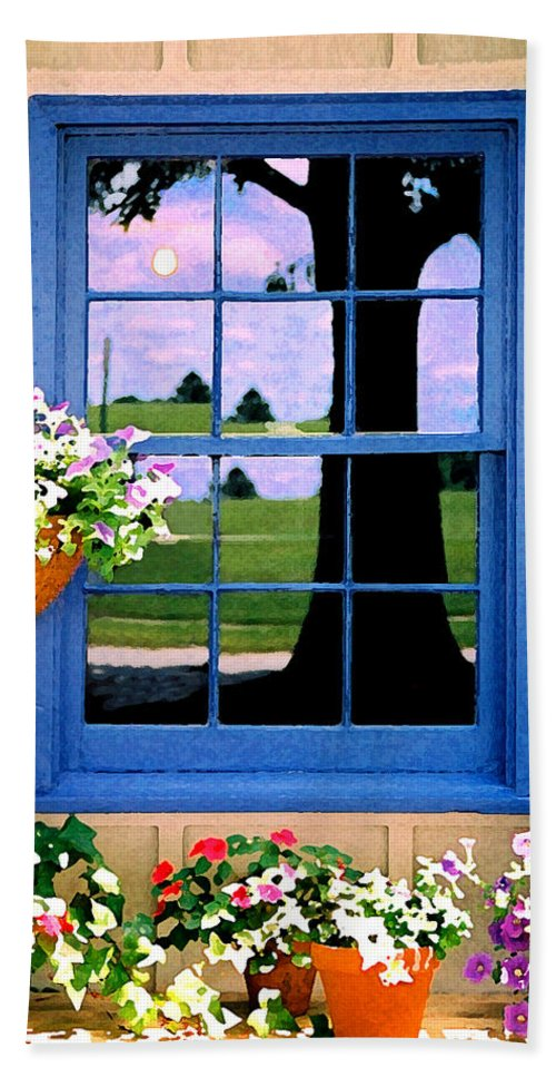 Still Life Hand Towel featuring the photograph Window by Steve Karol
