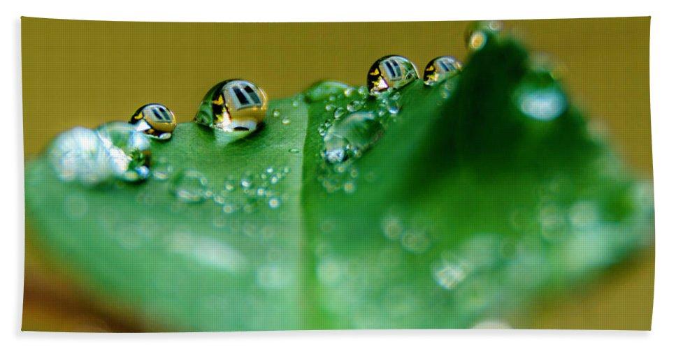 Macro Bath Sheet featuring the photograph Windows In Drops by Wolfgang Stocker