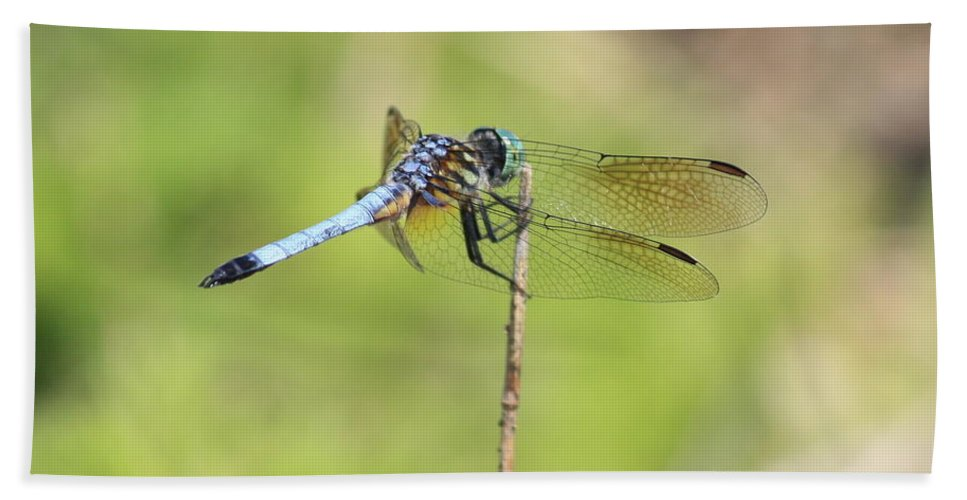 Dragonfly Bath Sheet featuring the photograph Windswept Dragonfly by Carol Groenen