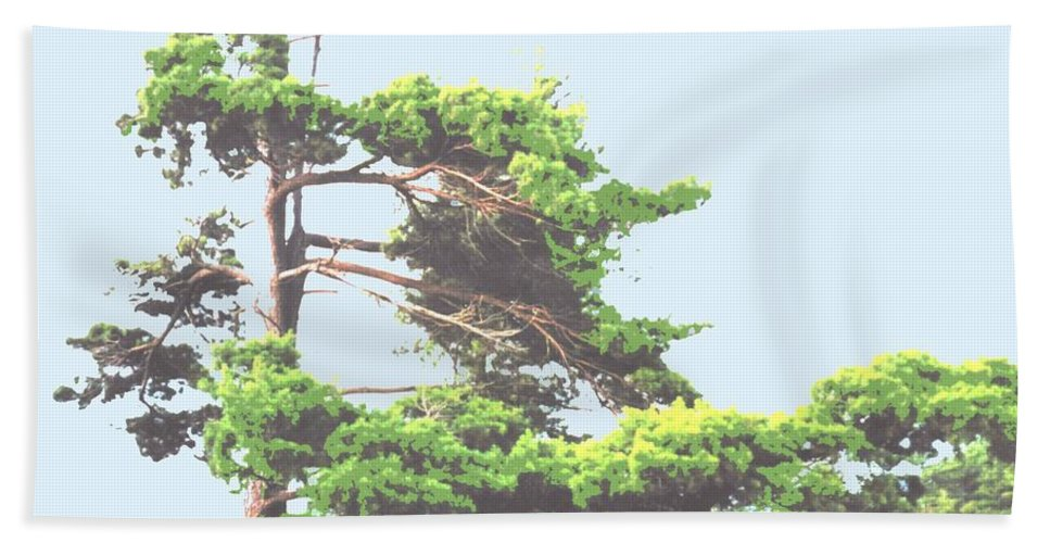 Pine Hand Towel featuring the photograph Windswept by Ian MacDonald