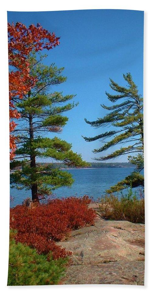 Autumn Colours Bath Towel featuring the photograph Windswept Point In Killbear by Maria Keady