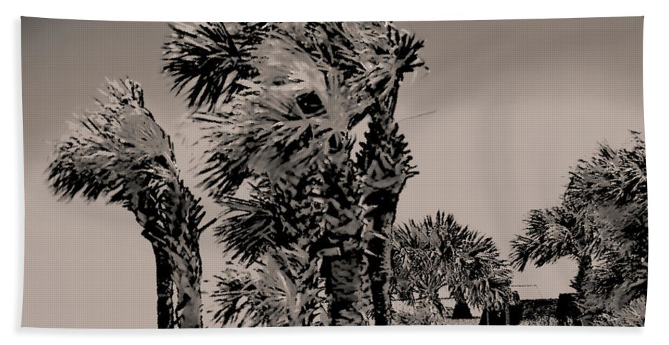 Palm Trees Bath Sheet featuring the photograph Windy Day At Beach by Gina O'Brien