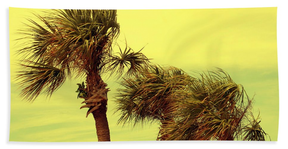 Palm Tree Hand Towel featuring the photograph Windy Palms by Susanne Van Hulst