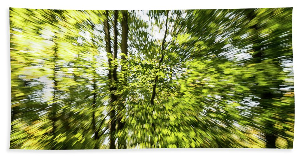 Trees Bath Sheet featuring the photograph Windy Trees by Julie Chambers