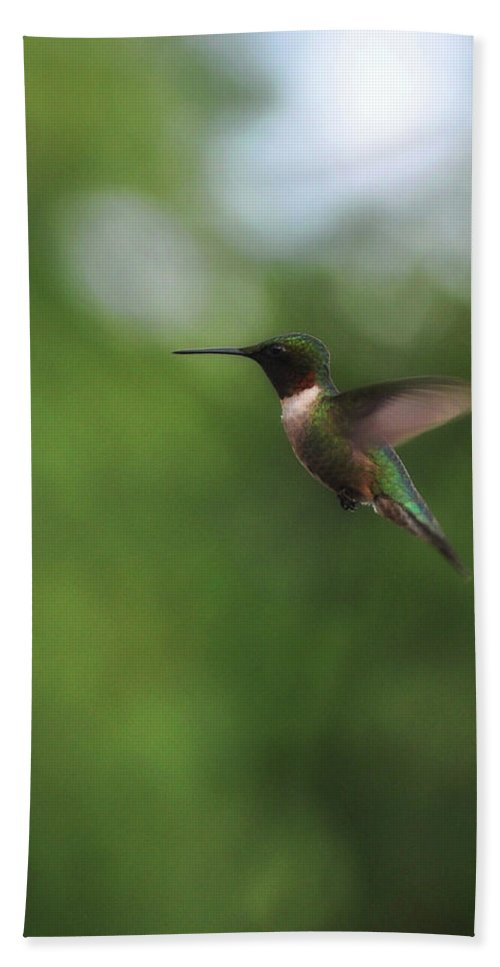Bird Bath Sheet featuring the photograph Wings In Motion by JAMART Photography