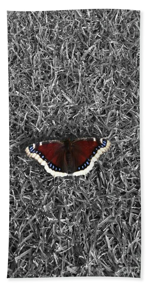 Moth Bath Sheet featuring the photograph Wings On Grass by Ron Bissett