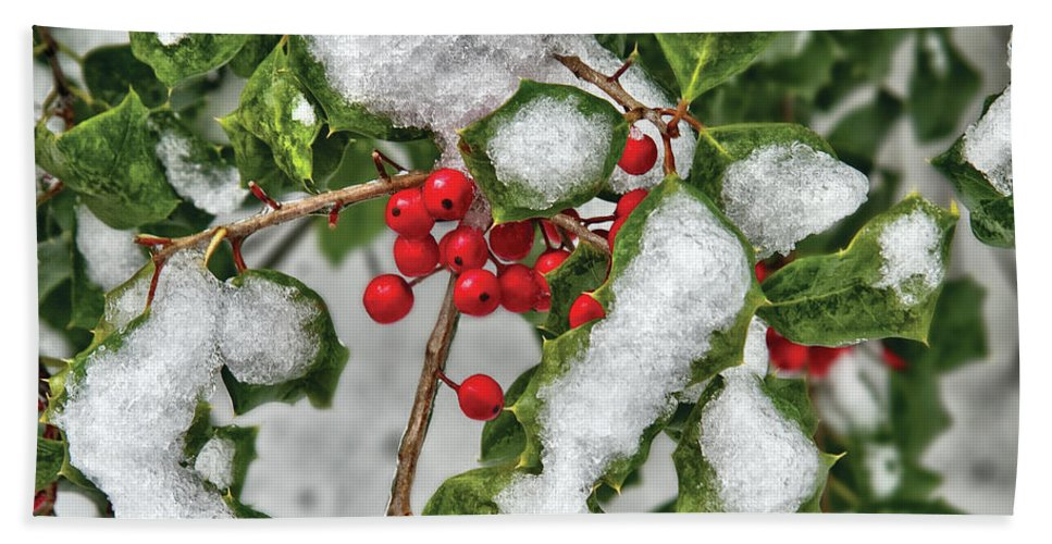 Savad Bath Sheet featuring the photograph Winter - Ice Coated Holly by Mike Savad