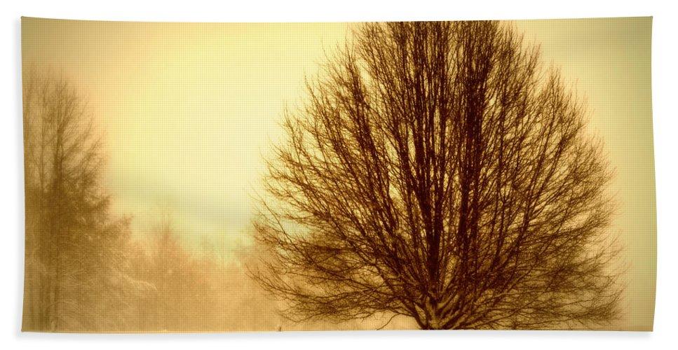 Winter Bath Sheet featuring the photograph Winter Calm by Tina Meador
