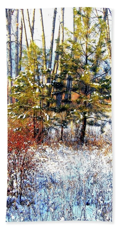 Winter Hand Towel featuring the photograph Winter Calm by Will Borden