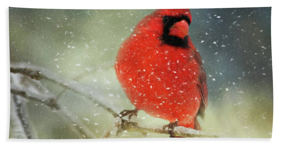 Animal Bath Sheet featuring the photograph Winter Card by Lana Trussell