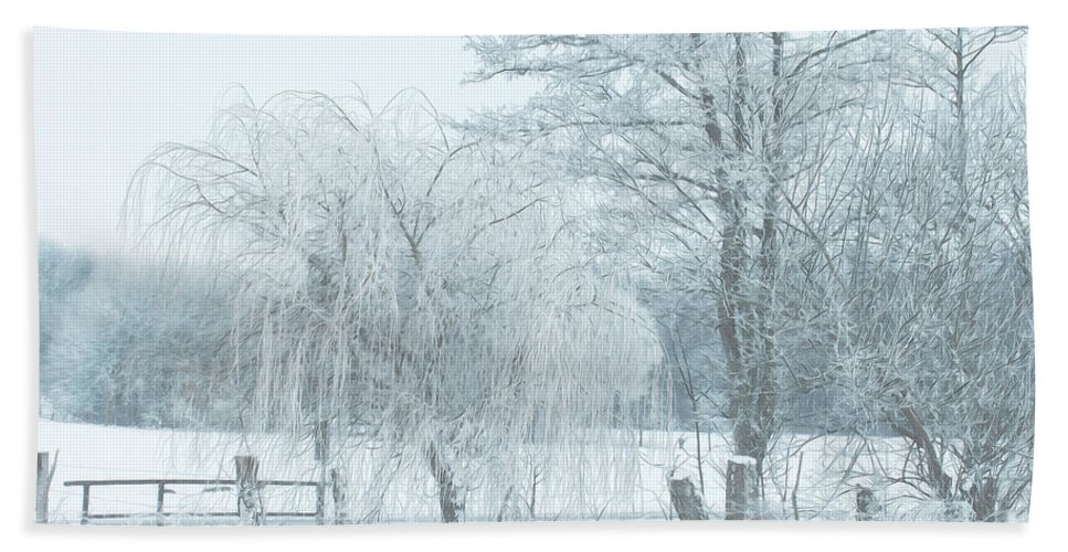 Photo Hand Towel featuring the photograph Winter Chill by Jutta Maria Pusl