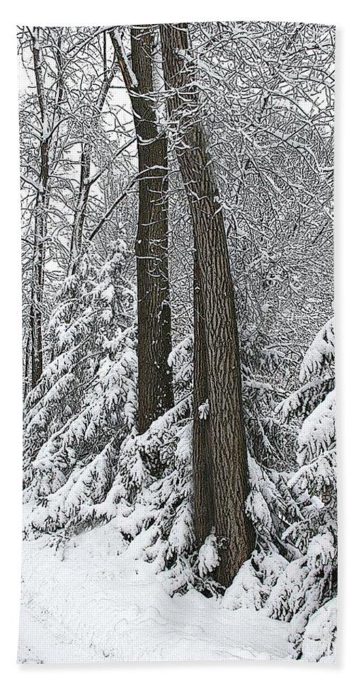 Winter Bath Sheet featuring the photograph Winter Drive by Tom Reynen