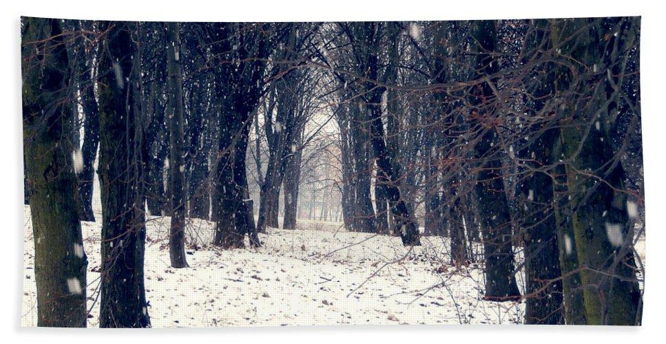Forest Hand Towel featuring the photograph Winter Forest by Miroslav Nemecek