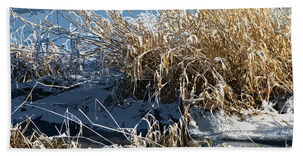 Grass Hand Towel featuring the photograph Winter Grass by Sharon Talson