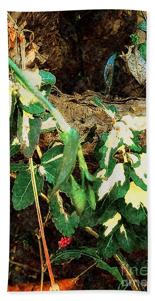 Autumn Bath Towel featuring the painting Winter Hideout by RC DeWinter