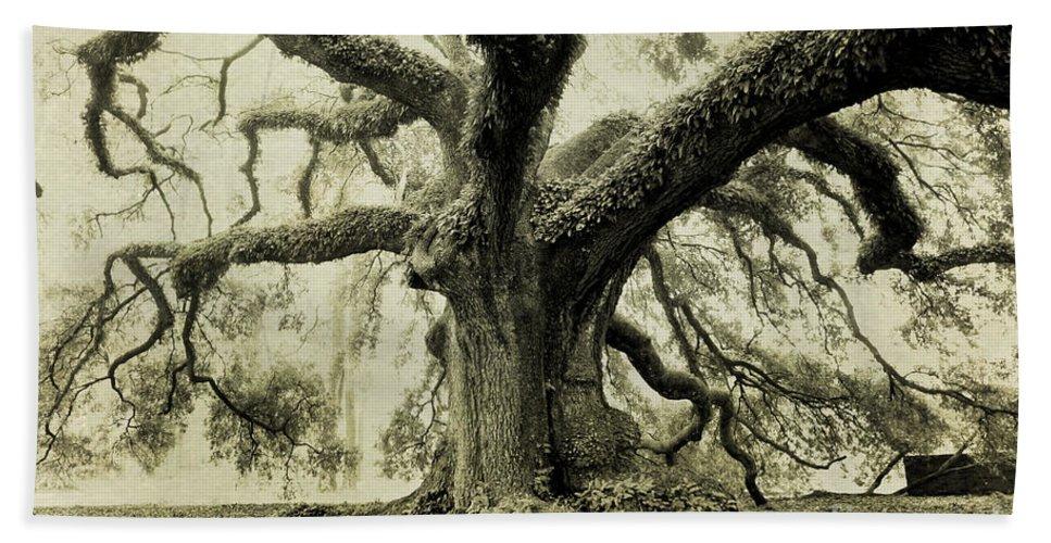 Oak Tree Bath Towel featuring the photograph Winter Oak by Scott Pellegrin