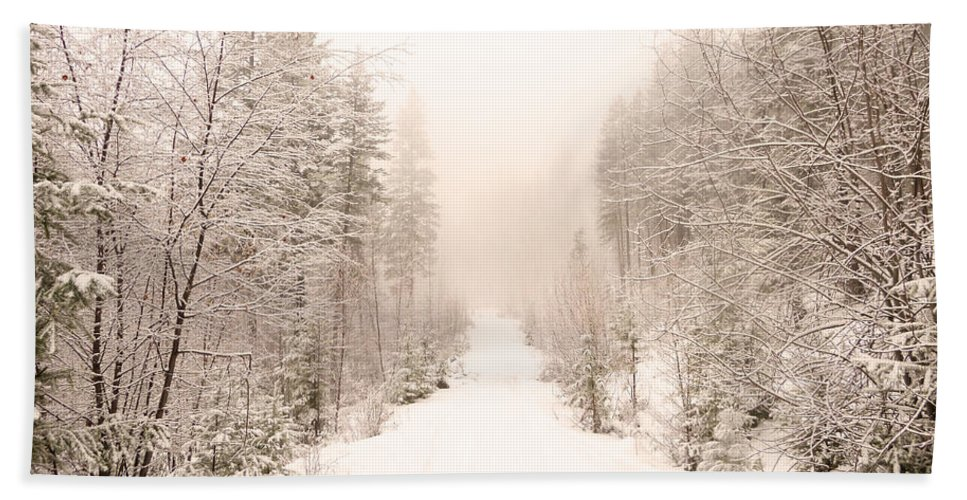 Winter Hand Towel featuring the photograph Winter Quiet by Tara Turner