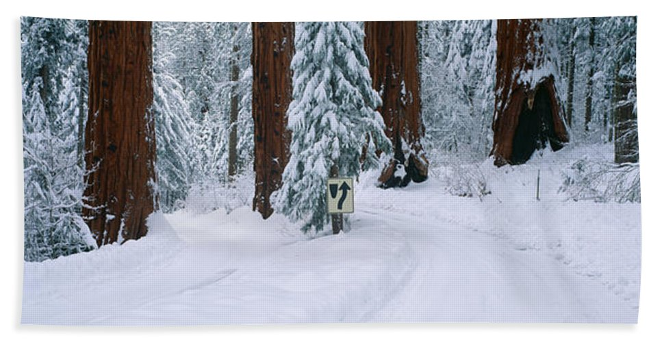 Photography Bath Sheet featuring the photograph Winter Road Into Sequoia National Park by Panoramic Images