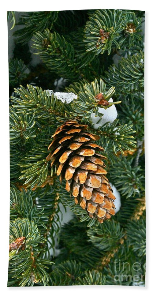 Tree Bath Sheet featuring the photograph Winter Spruce by Rick Monyahan