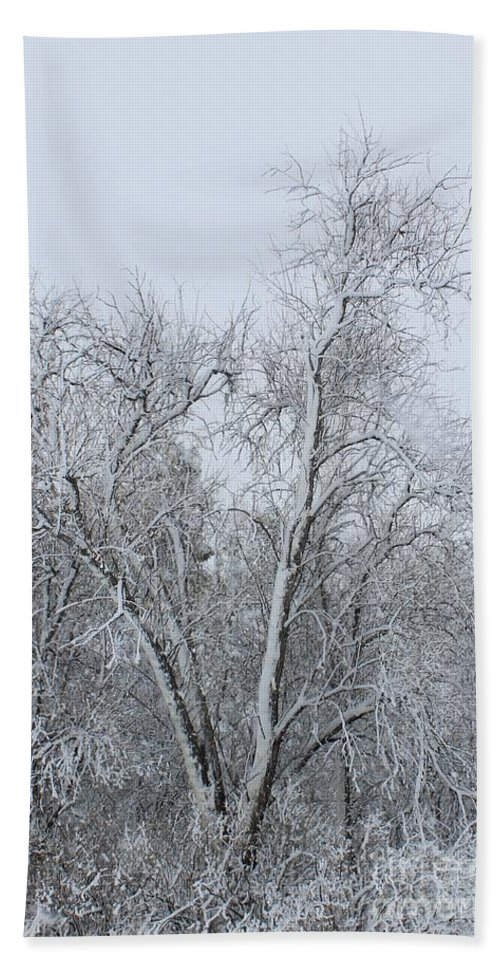Nature Hand Towel featuring the photograph Winter Storm by Tonya Hance