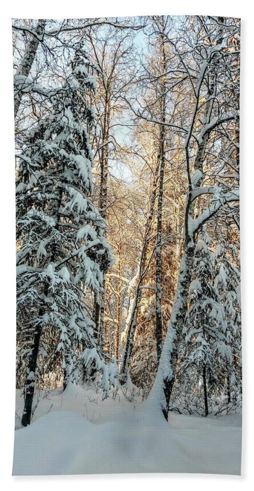Winter Bath Sheet featuring the photograph Winter Sun by Joshua Stoker