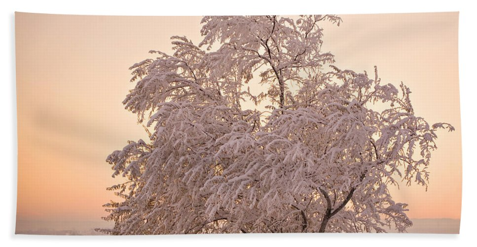 Winter Bath Sheet featuring the photograph Winter Sunset by Marilyn Hunt