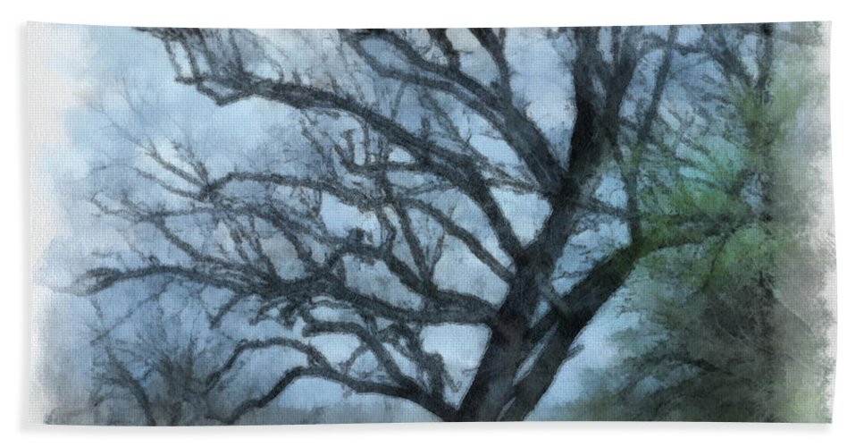 Texas Bath Sheet featuring the photograph Winter Tree by Paulette B Wright