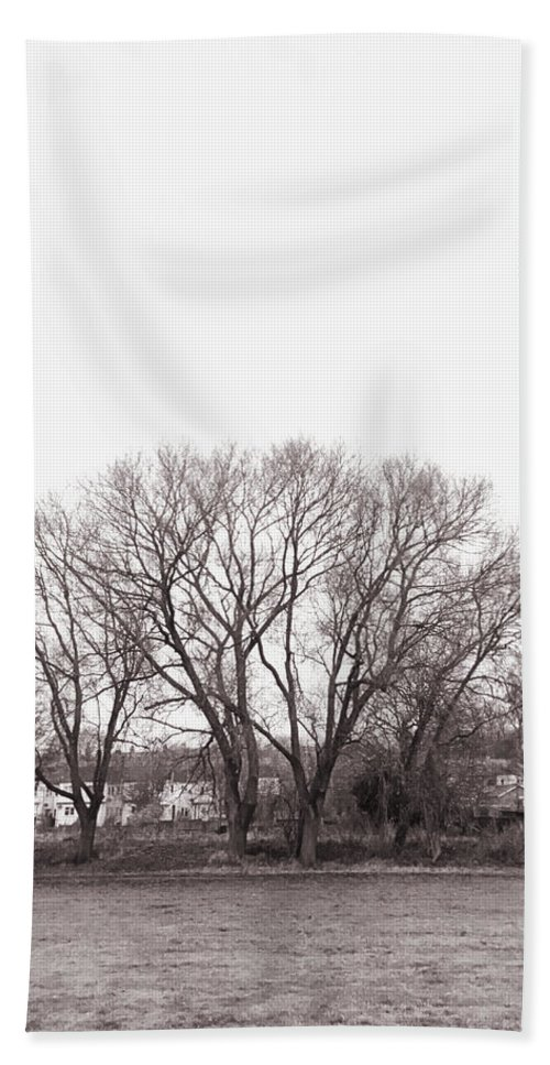 Abandoned Hand Towel featuring the photograph Winter Trees Monochrome by Tom Gowanlock