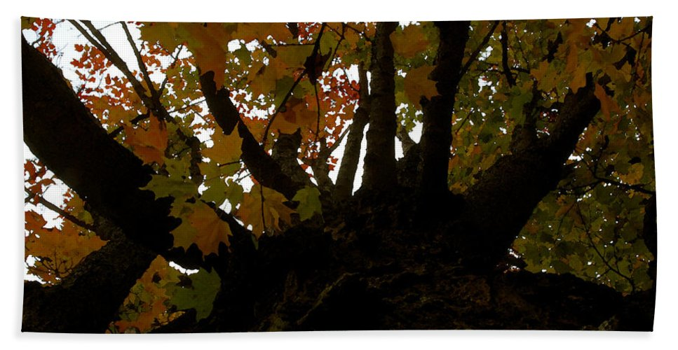 Autumn Hand Towel featuring the painting Winter Warning by David Lee Thompson